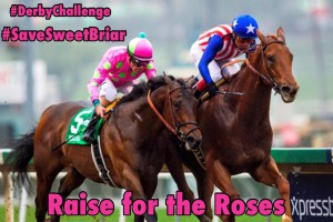 Kentucky Derby Challenge