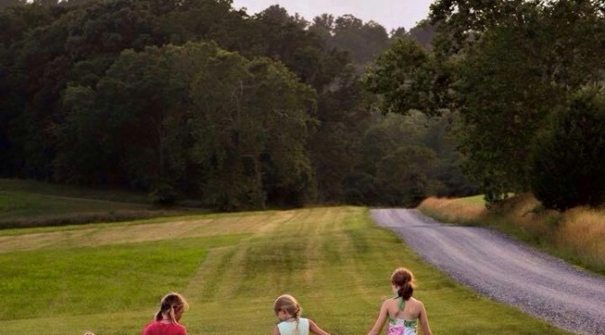 Saving Sweet Briar:  A Story of Alumnae Engagement (Part I of ???)