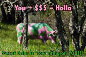 One of the brilliant memes created during the social media campaign to save Sweet Briar College.